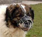 Caucasian Shepherd Basket Muzzle - Cage Wire Dog Muzzle For Caucasian Shepherd