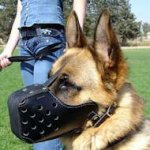 Leather Dog Muzzle for Attack/Agitation Work