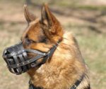 Dog Muzzle Stress Free For German Shepherd