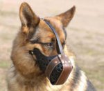 German Shepherd Training Dog Muzzle