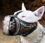Bull Terrier Training Dog Muzzle