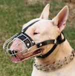 English Bull Terrier Basket Muzzle - Cage Wire Dog Muzzle For English Bull Terrier
