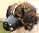 New Zealand Leather Dog Muzzle For Caucasian Shepherd