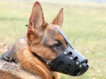 New Zealand Leather Dog Muzzle For German Shepherd