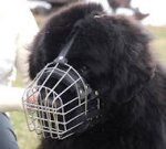 Newfoundland Basket Muzzle - Cage Wire Dog Muzzle For Newfoundland