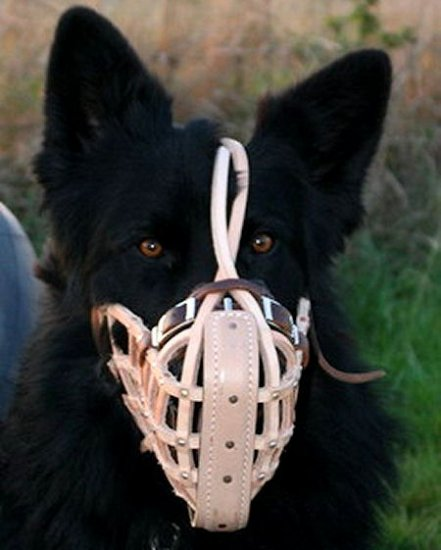 German Shepherd Leather Dog Muzzle - Muzzle Fighting For Police