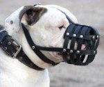 Leather Light Weight Ventilation Muzzle for Argentinian Mastiff