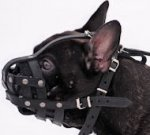 French Bulldog Light Weight Ventilation-small leatthe muzzle M41