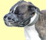 Boxer Basket Muzzle - Cage Wire Dog Muzzle For Boxer