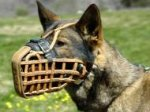 Malinoies Leather basket dog muzzle - dog training muzzle