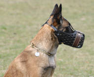 Belgian Malinois Training Dog Muzzle