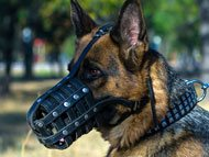 german-shepherd-muzzles