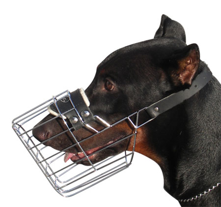 Doberman Wre Cage Dog Muzzle - Basket Dog Muzzle M9