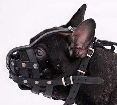 leather dog muzzle for french bulldogs