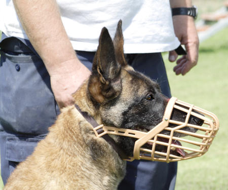 PLASTIC WIRE MUZZLE DOG MUZZLE for Belgian Malinois