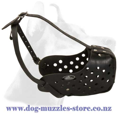 Agitation leather dog muzzle with steel bar