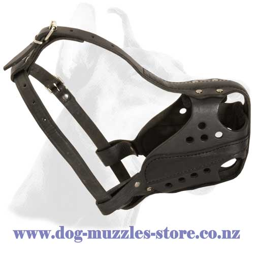Agitation training leather dog muzzle well ventilated