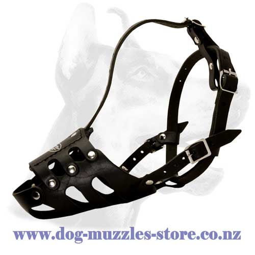 Leather-dog-muzzleperfectly ventilated