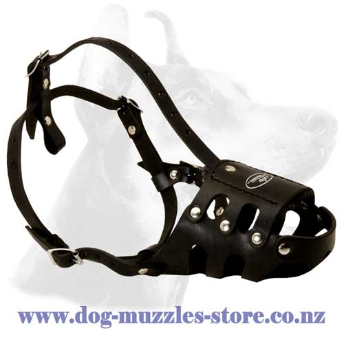 Leather dog muzzle stitched and riveted