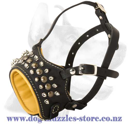 Leather dog muzzle with 2 rows of spikes and studs