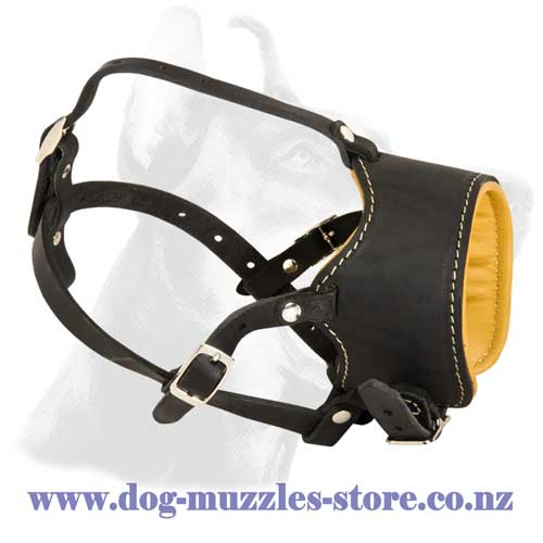 Leather dog muzzle with Nappa lining