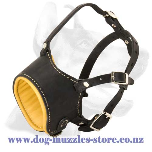 Leather dog muzzle with adjustable snout loop