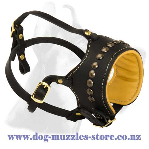 Leather dog muzzle with brass half spheres adornment