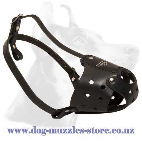 Leather dog muzzle with good ventilation
