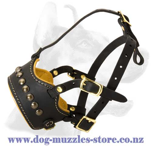 Leather dog muzzle with open nose
