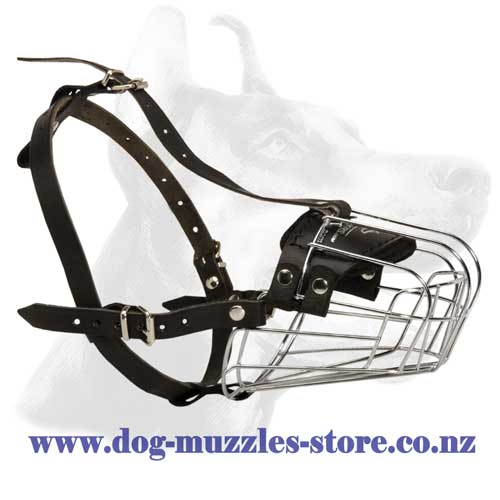 Metal cage dog muzzle with perfect air circulation