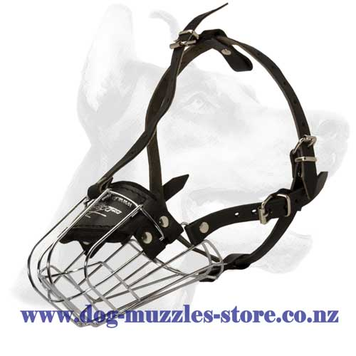 Metal dog muzzle with leather straps