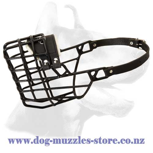 Wire cage dog muzzle for winter walking