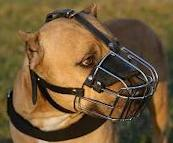 PitBull Basket Muzzle - Cage Wire Dog Muzzle For PitBull